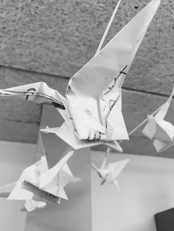 Origami cranes the good shepherd and recognizing joy jpeg image 5e581f66316e 1 2 jeuxipadfo Choice Image